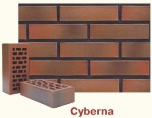 Cyberna